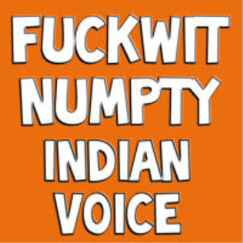 Fuckwit Numpty (Indian Voice)