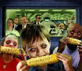 emf / gmo / preaching & tv program addiction = 2