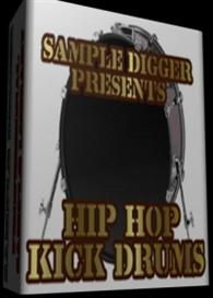 Professional Hip Hop Kick Drums   -  435 Wav Samples | Software | Audio and Video