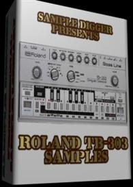 Roland Tb 303  -  501 Wav Samples | Music | Soundbanks