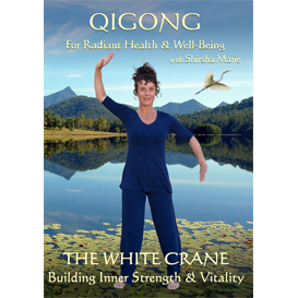 Qigong - The White Crane