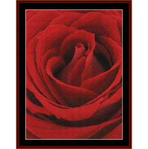 Blooming Red Rose - Floral cross stitch pattern download