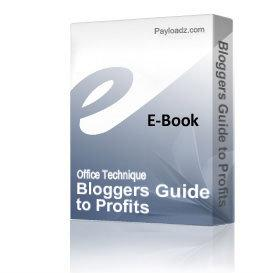 bloggers guide to profits