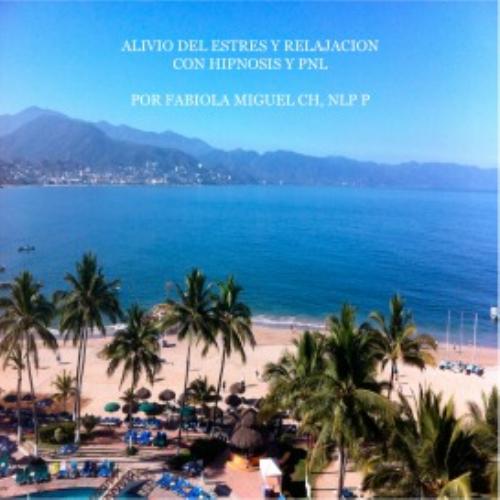 First Additional product image for - Programa Alivio del Estres y Relajacion hipnosis audios mp3