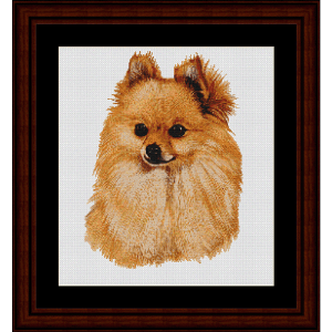 Pomeranian - Robert J. May cross stitch pattern by Cross Stitch Collectibles | Crafting | Cross-Stitch | Wall Hangings