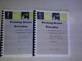 growing brains everyday curriculum download