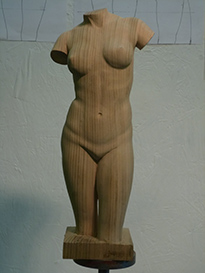 carving by numbers - female torso