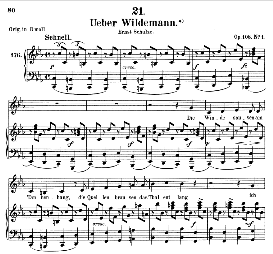 Über Wildemann D.867, Medium Voice in C Minor, F. Schubert (Pet.) | eBooks | Sheet Music