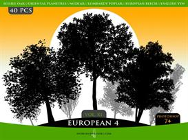 horhewsbrushes vol.xi-european 4