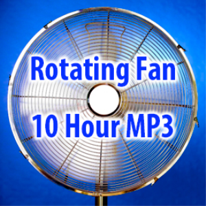 rotating fan (10 hours)
