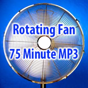 rotating fan (75 minutes)
