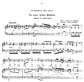 Ritornerai fra poco, High Voice in G Minor, A. Hasse. Caecilia, Ed. André (1894) Vol. I, 906-a | eBooks | Sheet Music