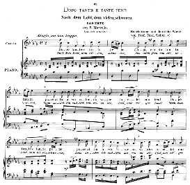 Dopo tante e tante pene (Cantata), High Voice in B Flat Minor, B.Marcello. (includes Quella Fiamma). Caecilia, Ed. André (1900) Vol. II, 906-d. PD | eBooks | Sheet Music