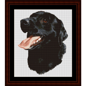 black labrador - robert j. may cross stitch pattern by cross stitch collectibles