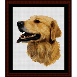 Golden Retriever -Robert J. May cross stitch pattern by Cross Stitch Collectibles | Crafting | Cross-Stitch | Wall Hangings