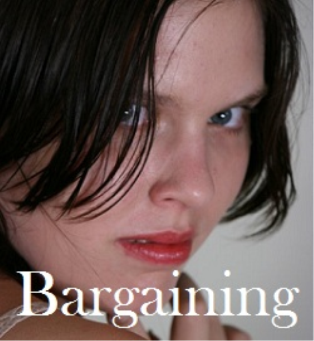 First Additional product image for - Bargaining by Kellie Powell