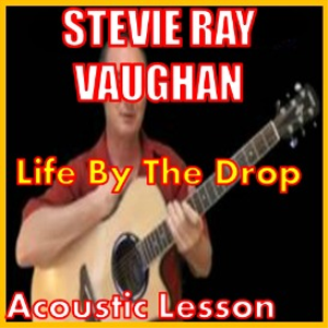 learn to play life by the drop by stevie ray vaughan