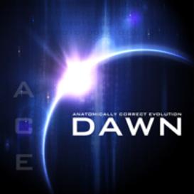 anatomically correct evolution: dawn