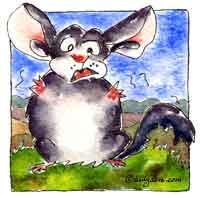 Chin Chill Out Chinchilla Original Cartoon Mini Art Print | Other Files | Clip Art