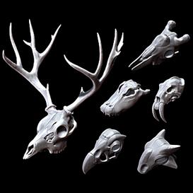 3dk skull kit 2 (pro, obj)
