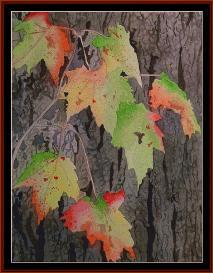 Fall Colors - Seasonal cross stitch pattern by Cross Stitch Collectibles | Crafting | Cross-Stitch | Wall Hangings