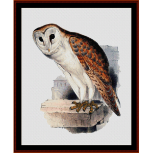 Barn Owl - Wildlife cross stitch pattern by Cross Stitch Collectibles | Crafting | Cross-Stitch | Wall Hangings