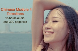 chinese module 4 - - directions