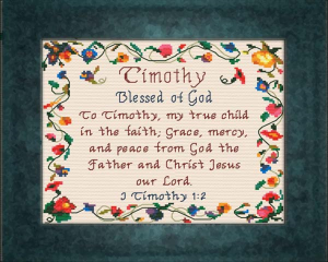 Name Blessings - Timothy 2 | Crafting | Cross-Stitch | Religious