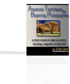 Advanced Techniques for Beginning Photographers | eBooks | Arts and Crafts