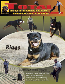 issue 1 of 2009