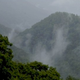 smoky mountain rain - nature sounds