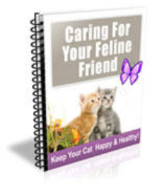 caring for your feline