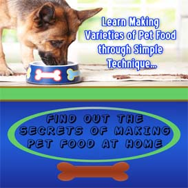 secrets of making pet food at home (mp3 audio + pdf ebook)