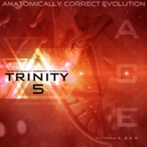 anatomically correct evolution: trinity 5