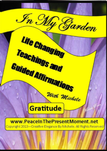 gratitude teaching and guided gratitude affirmations by michele penn (video download)