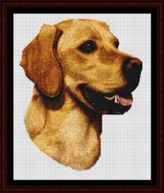 Yellow Labrador - Robert J. May cross stitch pattern by Cross Stitch Collectibles | Crafting | Cross-Stitch | Wall Hangings