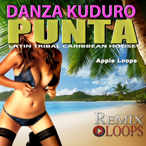 Danza Kuduro Punta Drum & Percussion Loops | Music | Soundbanks