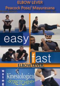 elbow lever peacock pose in yoga or mayurasana