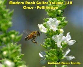 Rock Guitar vol.118 'Cross-Pollination' CD mp3's/zip | Music | Instrumental