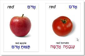 hebrew shapes & colors picture cards
