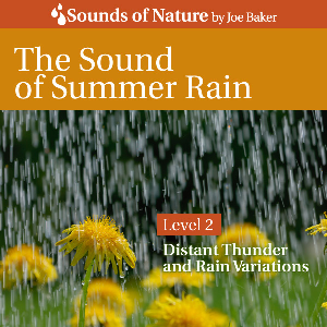 the sound of summer rain by joe baker