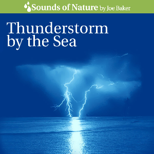 thunderstorm by the sea by joe baker