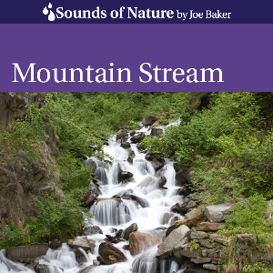 mountain stream by joe baker
