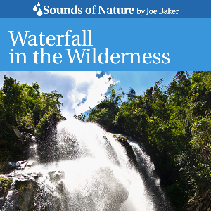 waterfall in the wilderness by joe baker