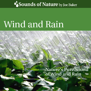 wind and rain by joe baker