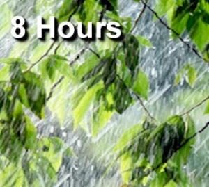 summer shower  - 8 hours