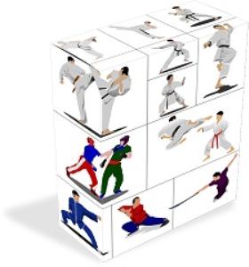 Ultimate Karate, self defense e-books, videoclips | eBooks | Self Help