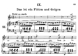 Das ist ein Flöten und Geigen Op.48 No.9, Medium Voice in D minor (Original Key), R. Schumann (Dichterliebe), C.F. Peters | eBooks | Sheet Music