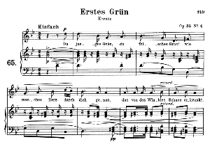 Erstes Grün Op. 35 No.4, Medium Voice in G minor, R. Schumann, C.F. Peters | eBooks | Sheet Music