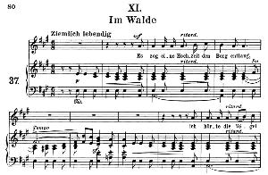 Im Walde Op.39 No.11, Medium Voice in A Major,  R. Schumann (Liederkreis), C.F. Peters | eBooks | Sheet Music
